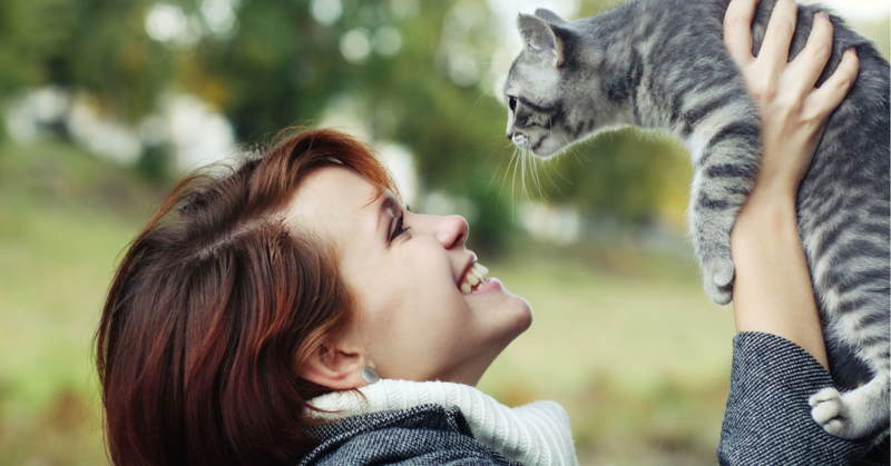 Benefits Of Owning A Pet Cat